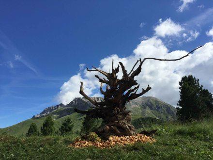 5 Intrecci dei ragazzi disabili Nuova Casa Serena Anffas Trentino RESPIRART 2016