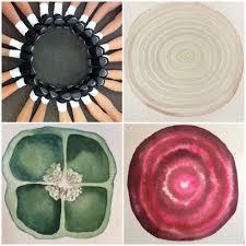 Alessandra Bruno acquerello sezioni botaniche
